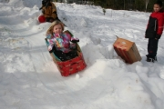 Hannah Bartlett took first place in the children&#039;s luge race during the annual Winterfest celebrations. The luge was one of many new events featured at the family fun event. Photo Erin Perkins.